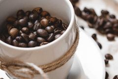 coffee-cup-and-beans-still-life_free_stock_photos_picjumbo